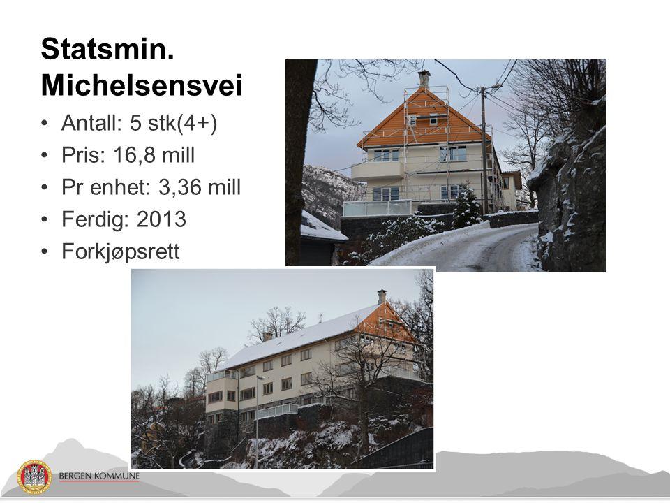 Statsmin. Michelsensvei