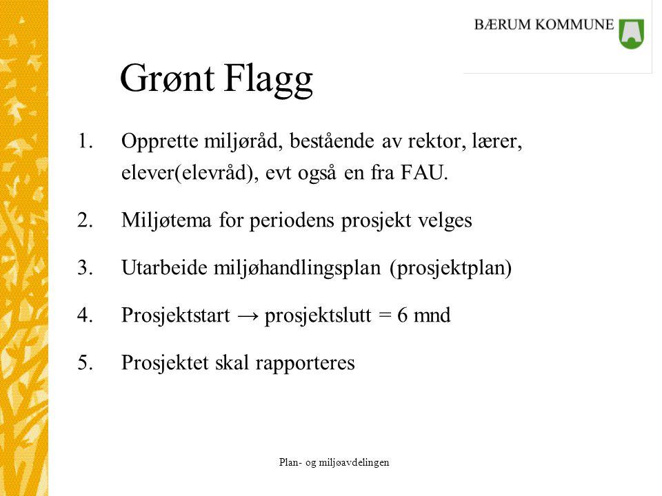 Grønt Flagg Opprette miljøråd, bestående av rektor, lærer,