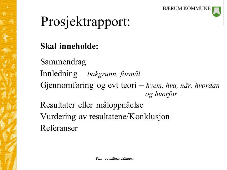 Prosjektrapport: Skal inneholde: Sammendrag