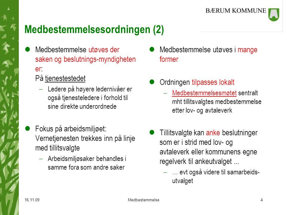 Medbestemmelsesordningen (2)