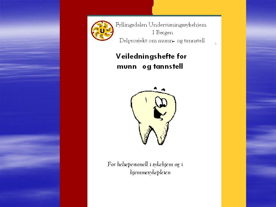 Det odontologiske fakultet