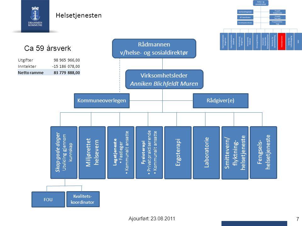 Helsetjenesten Ca 59 årsverk Rådmannen v/helse- og sosialdirektør