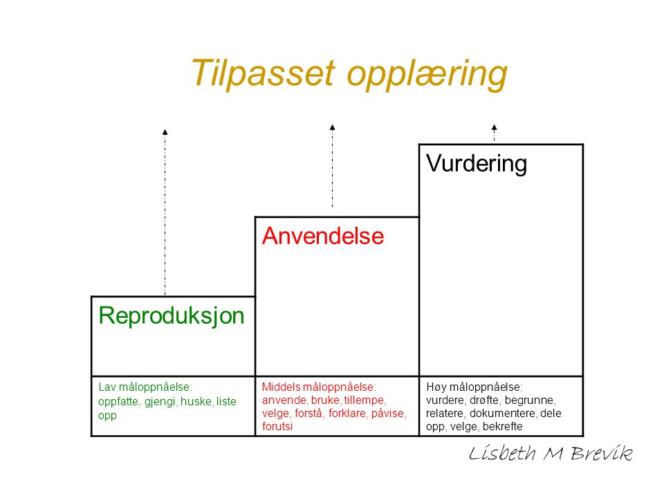 Tilpasset opplæring Vurdering Anvendelse Reproduksjon Lisbeth M Brevik