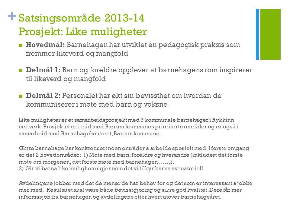 Satsingsområde 2013-14 Prosjekt: Like muligheter