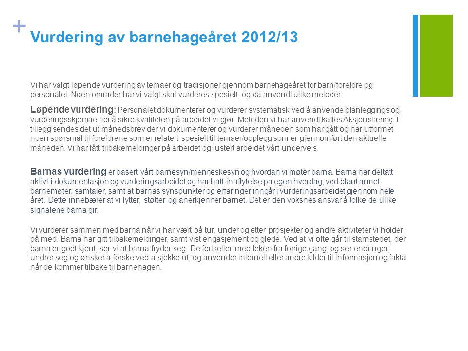 Vurdering av barnehageåret 2012/13