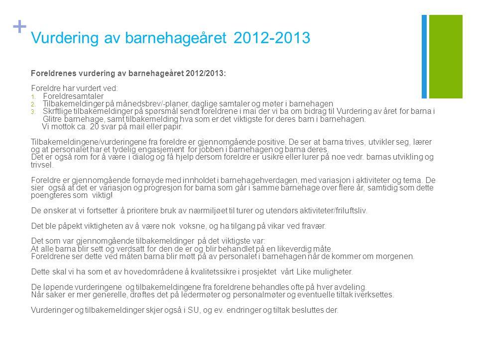 Vurdering av barnehageåret 2012-2013