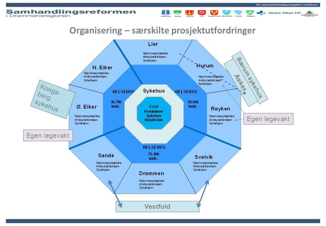 Organisering – særskilte prosjektutfordringer