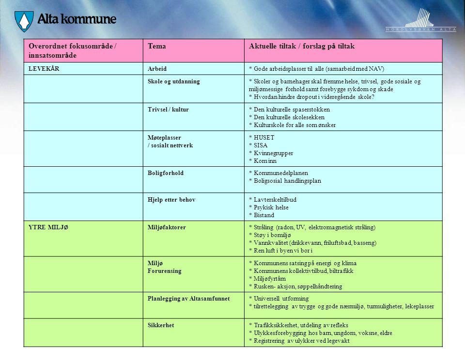 Overordnet fokusområde / innsatsområde Tema