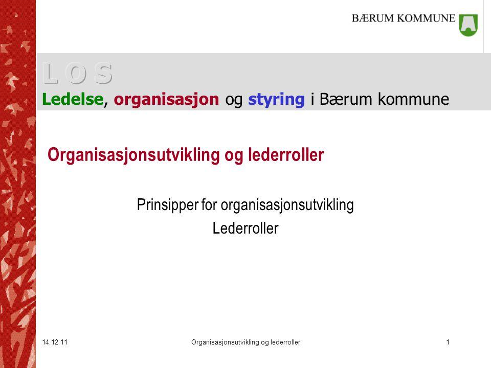 Organisasjonsutvikling og lederroller