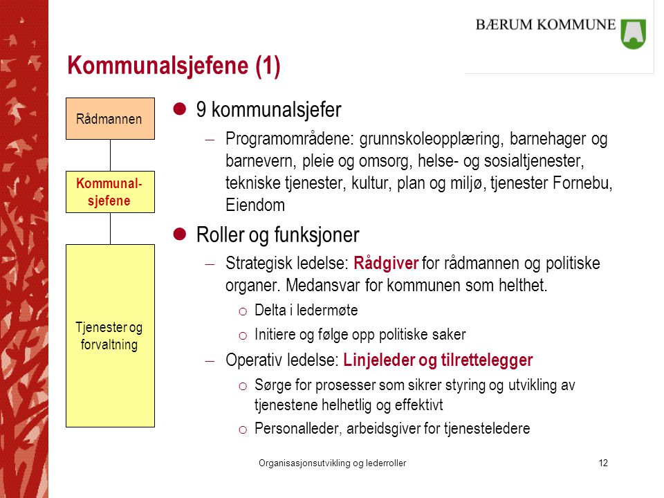 Kommunalsjefene (1) 9 kommunalsjefer Roller og funksjoner