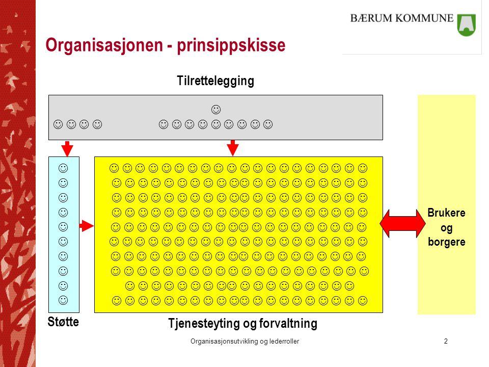 Organisasjonen - prinsippskisse