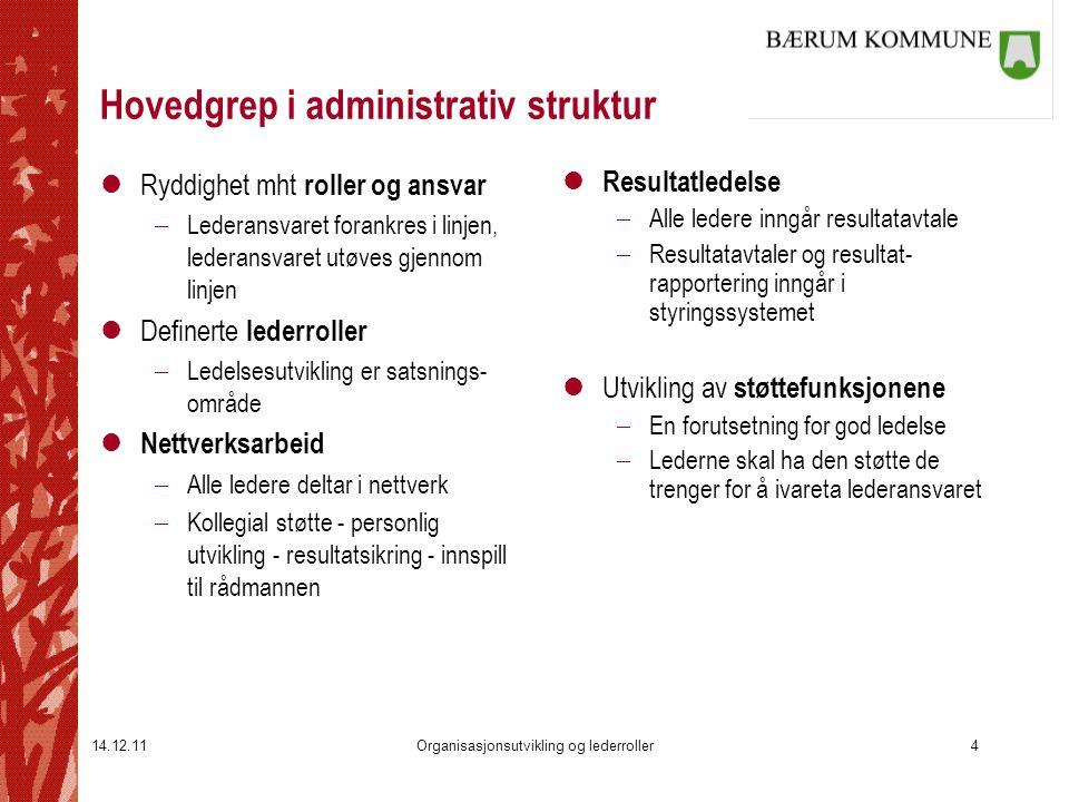 Hovedgrep i administrativ struktur