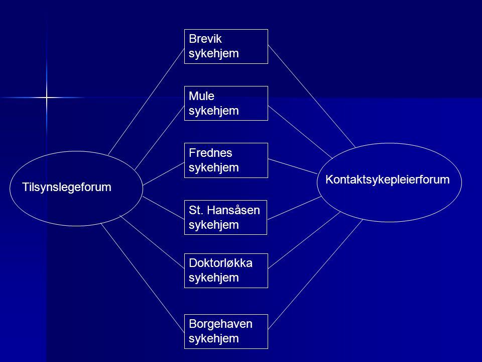 Brevik sykehjem Mule sykehjem. Frednes. sykehjem. Kontaktsykepleierforum. Tilsynslegeforum. St. Hansåsen.