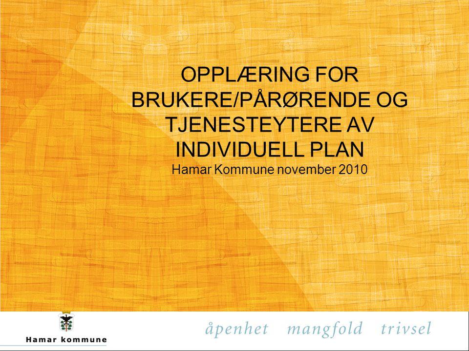 OPPLÆRING FOR BRUKERE/PÅRØRENDE OG TJENESTEYTERE AV INDIVIDUELL PLAN Hamar Kommune november 2010