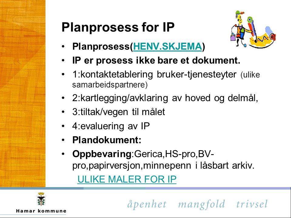 Planprosess for IP Planprosess(HENV.SKJEMA)