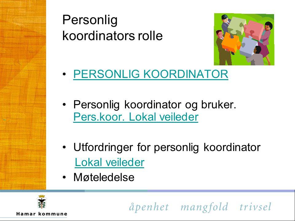 Personlig koordinators rolle