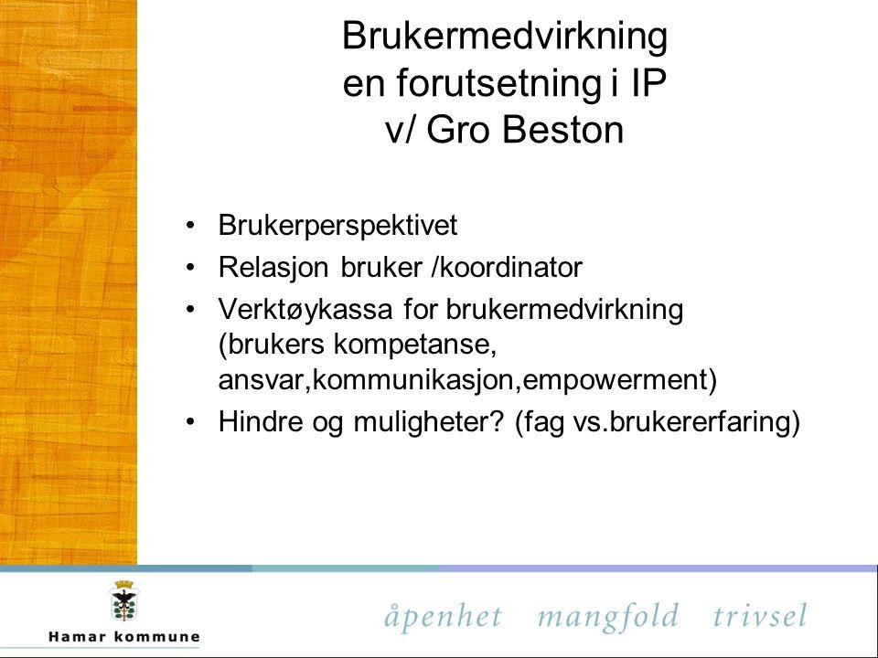 Brukermedvirkning en forutsetning i IP v/ Gro Beston