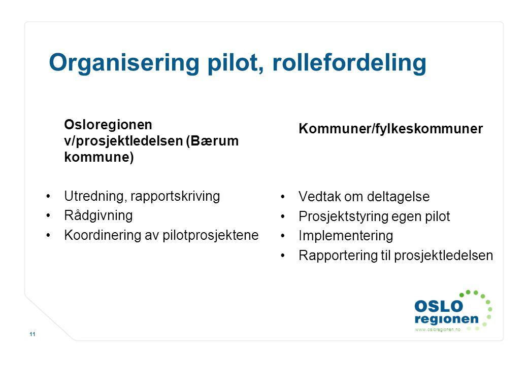 Organisering pilot, rollefordeling