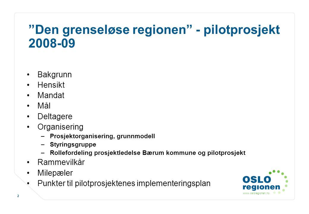 Den grenseløse regionen - pilotprosjekt 2008-09