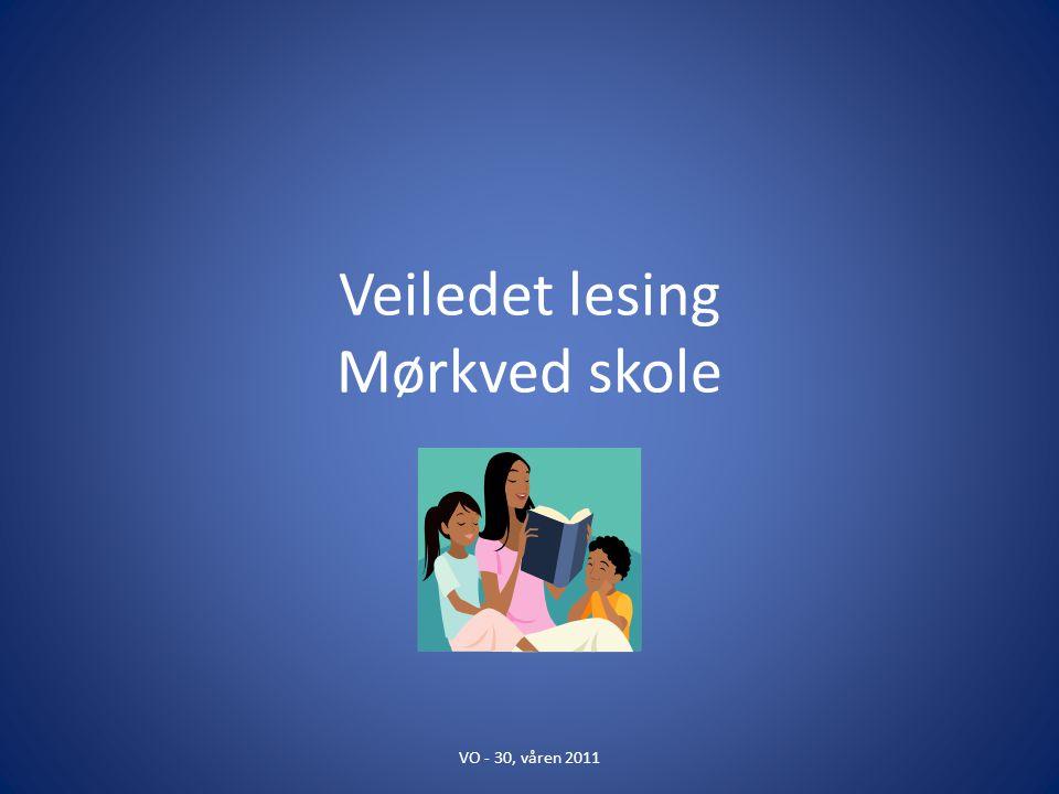 Veiledet lesing Mørkved skole
