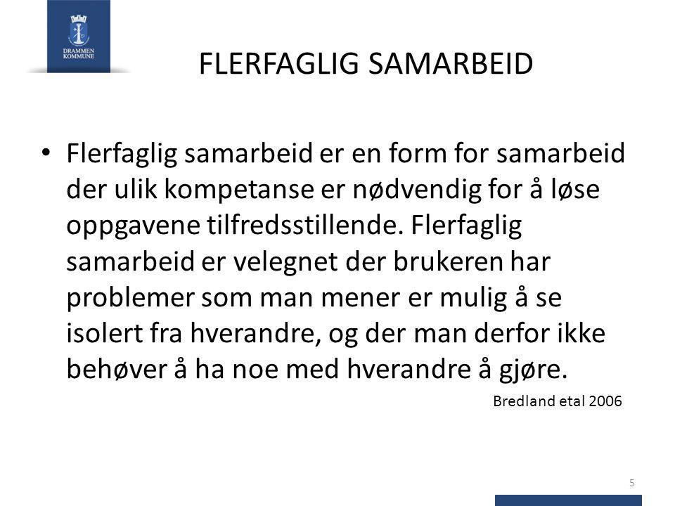 FLERFAGLIG SAMARBEID
