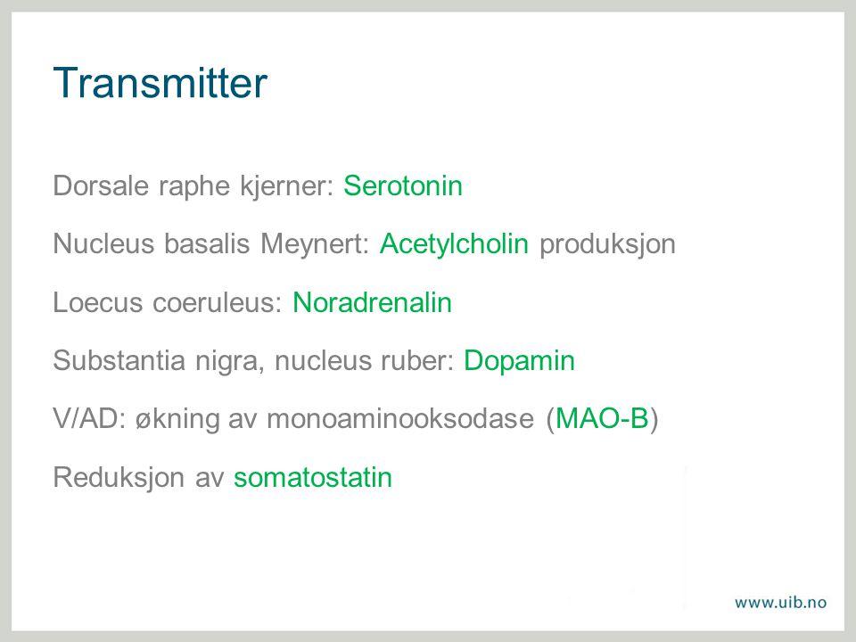 Transmitter Dorsale raphe kjerner: Serotonin