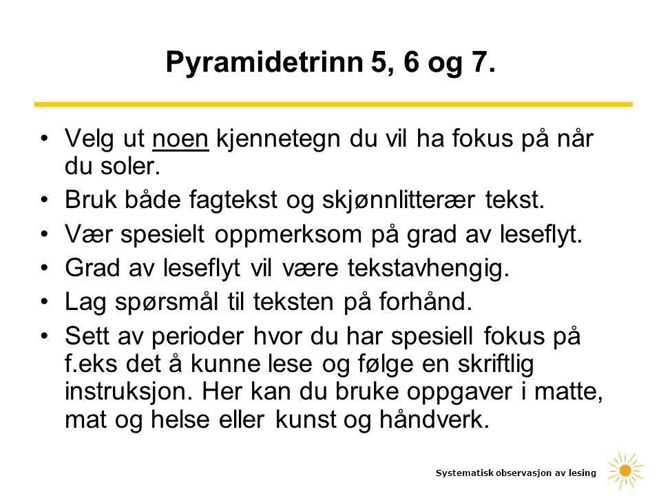 Pyramidetrinn 5, 6 og 7. Velg ut noen kjennetegn du vil ha fokus på når du soler. Bruk både fagtekst og skjønnlitterær tekst.