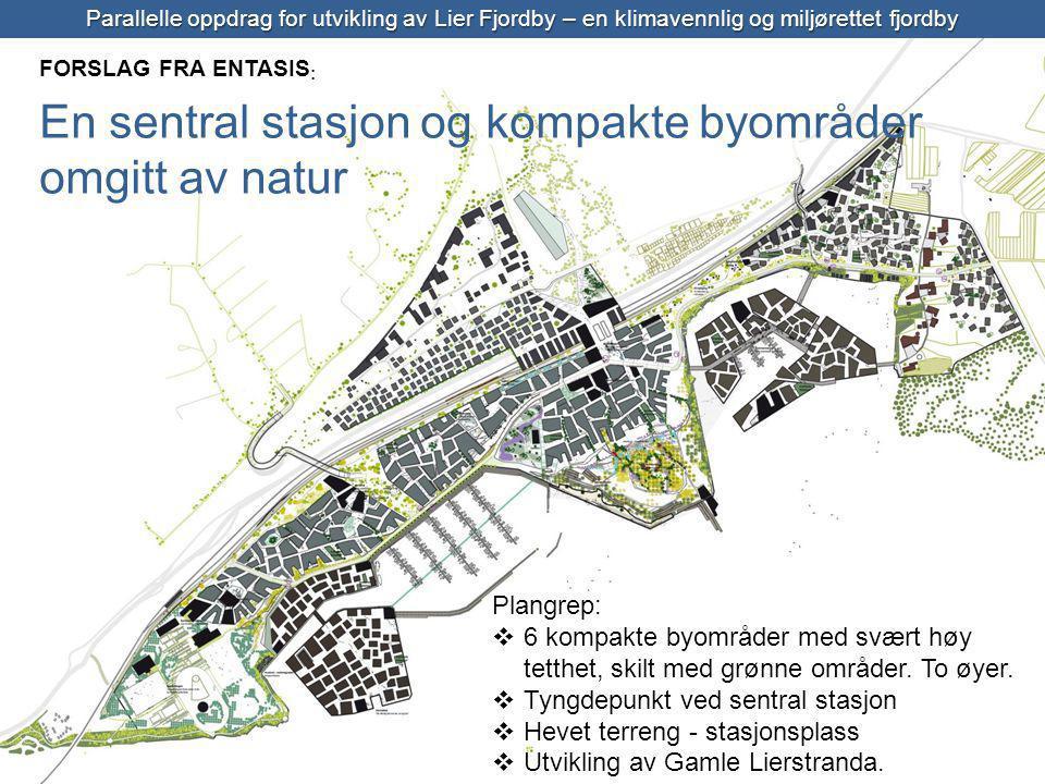 En sentral stasjon og kompakte byområder omgitt av natur Entasis
