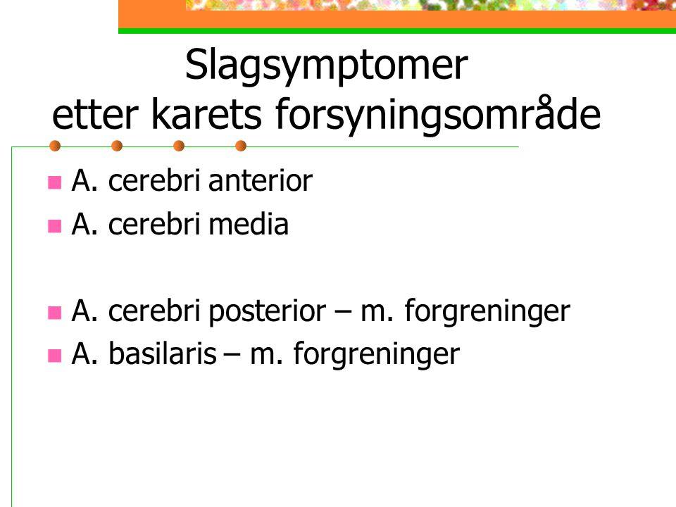 Slagsymptomer etter karets forsyningsområde