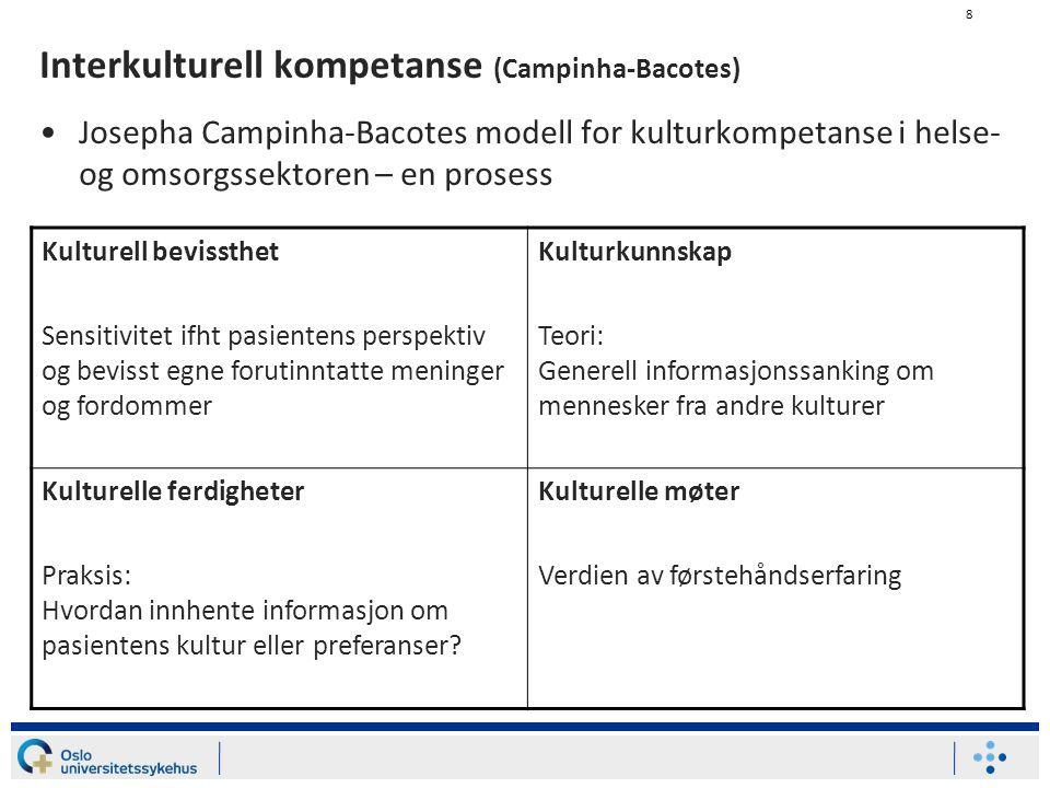 Interkulturell kompetanse (Campinha-Bacotes)
