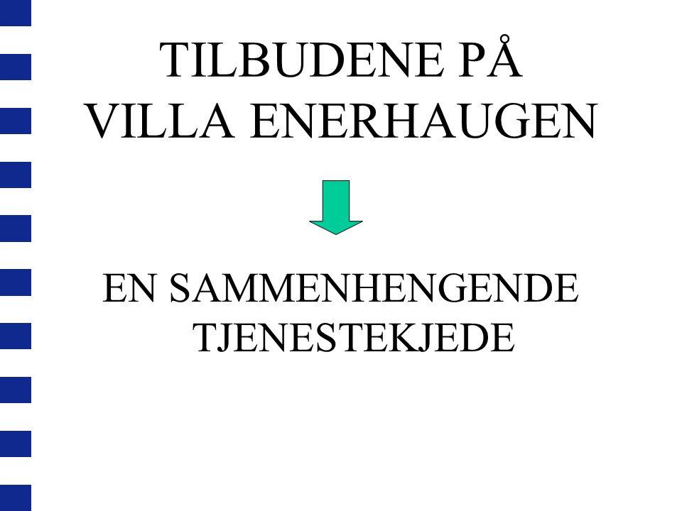 TILBUDENE PÅ VILLA ENERHAUGEN