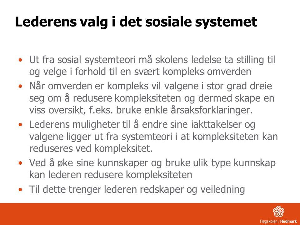 Lederens valg i det sosiale systemet