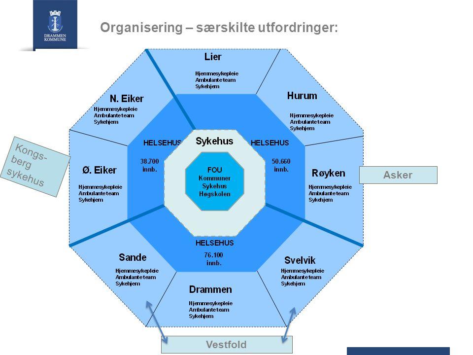 Organisering – særskilte utfordringer: