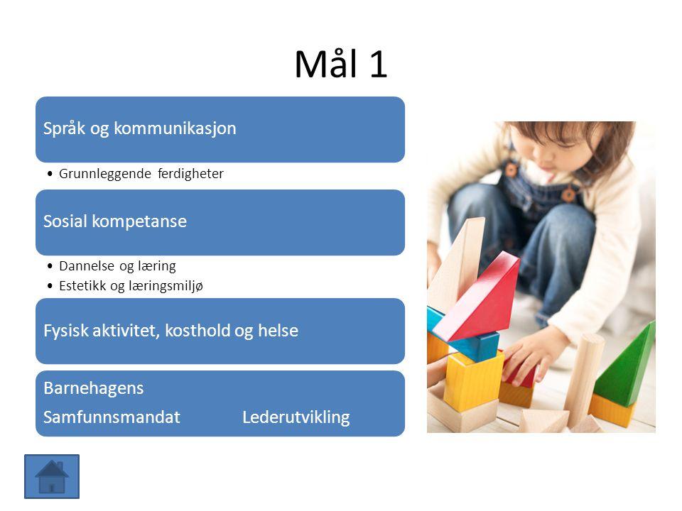 Mål 1 Språk og kommunikasjon Grunnleggende ferdigheter