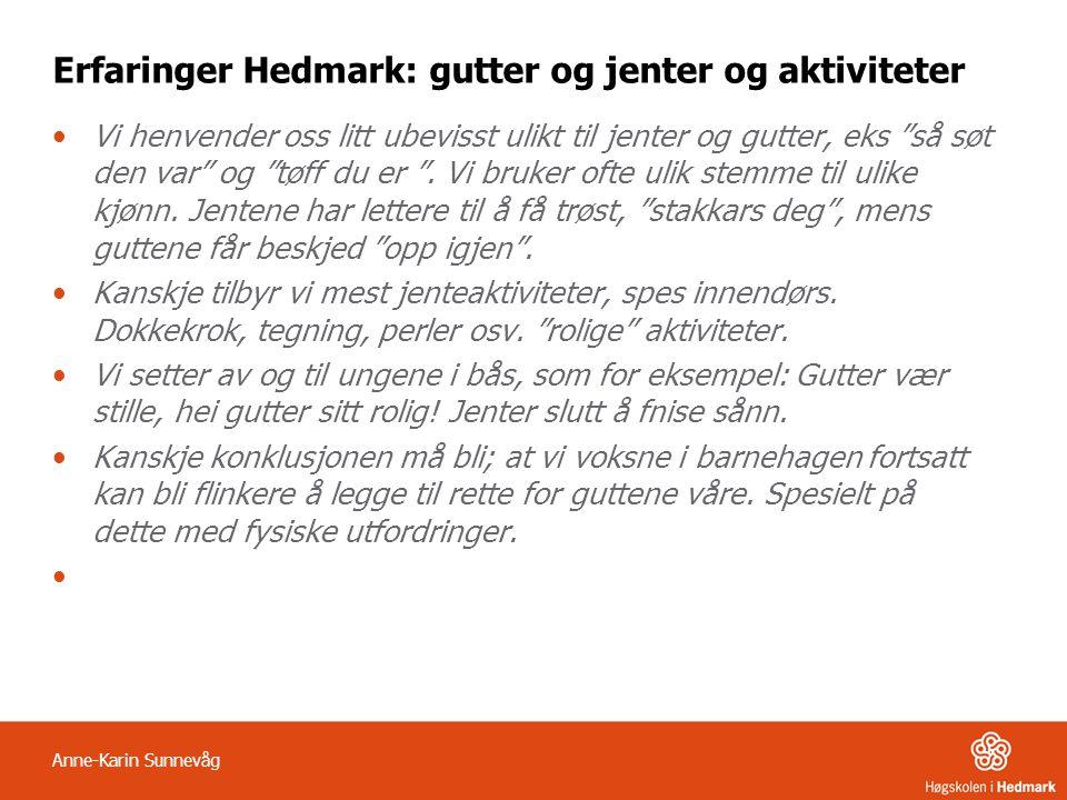 Erfaringer Hedmark: gutter og jenter og aktiviteter