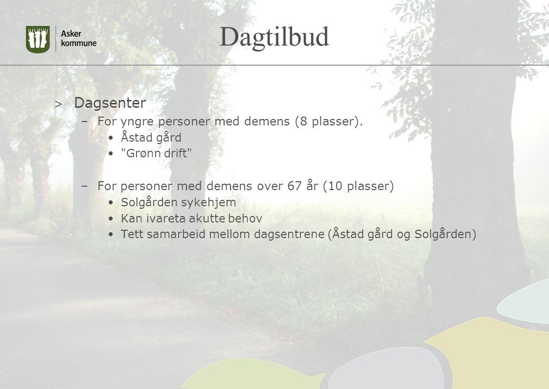 Dagtilbud Dagsenter For yngre personer med demens (8 plasser).