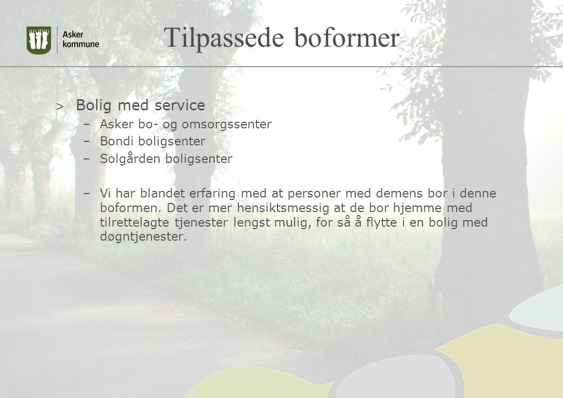 Tilpassede boformer Bolig med service Asker bo- og omsorgssenter