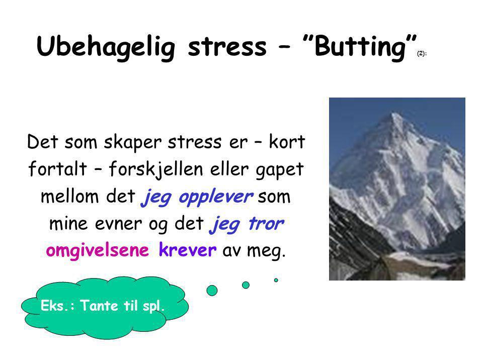 Ubehagelig stress – Butting (2):