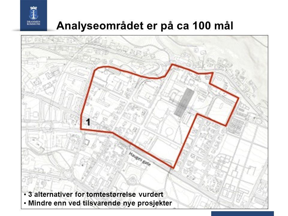 Analyseområdet er på ca 100 mål