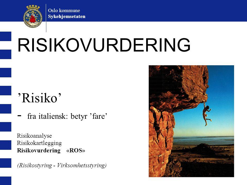 Oslo kommune Sykehjemsetaten. RISIKOVURDERING.