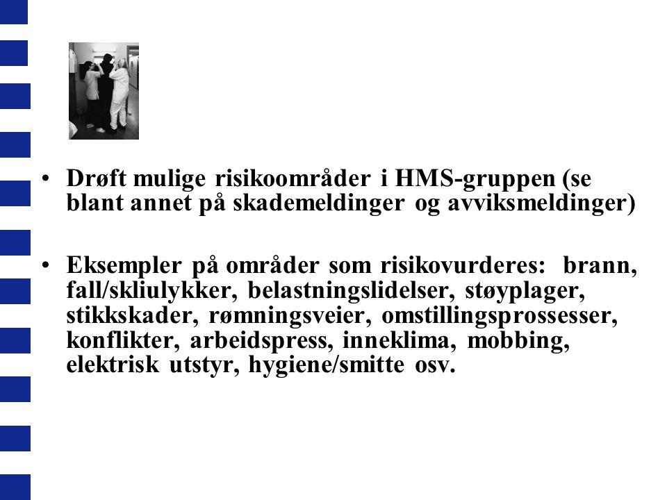 Drøft mulige risikoområder i HMS-gruppen (se blant annet på skademeldinger og avviksmeldinger)