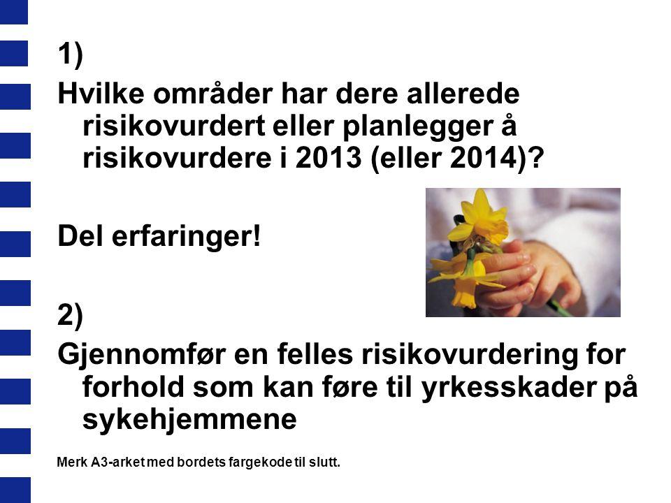 1) Hvilke områder har dere allerede risikovurdert eller planlegger å risikovurdere i 2013 (eller 2014)