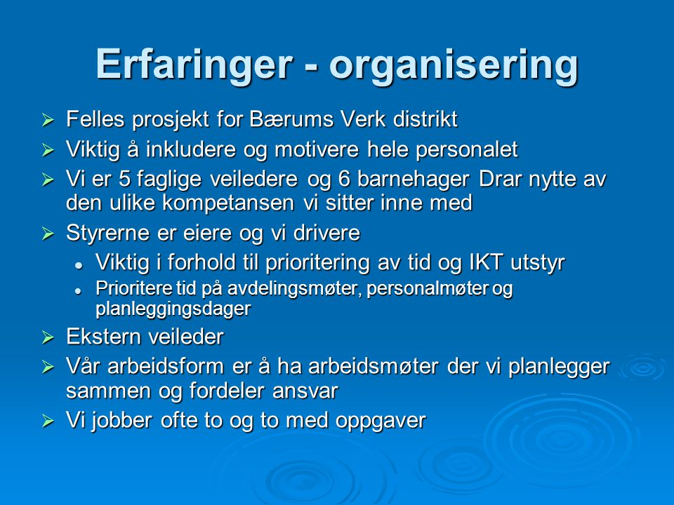 Erfaringer - organisering