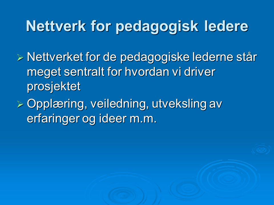 Nettverk for pedagogisk ledere