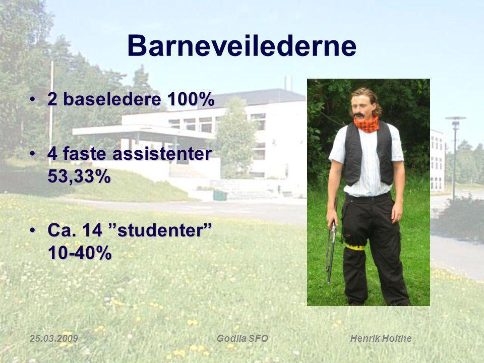 Barneveilederne 2 baseledere 100% 4 faste assistenter 53,33%