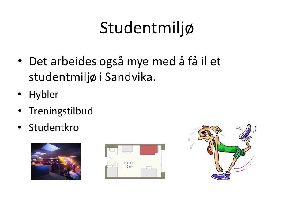 Studentmiljø Det arbeides også mye med å få il et studentmiljø i Sandvika. Hybler. Treningstilbud.
