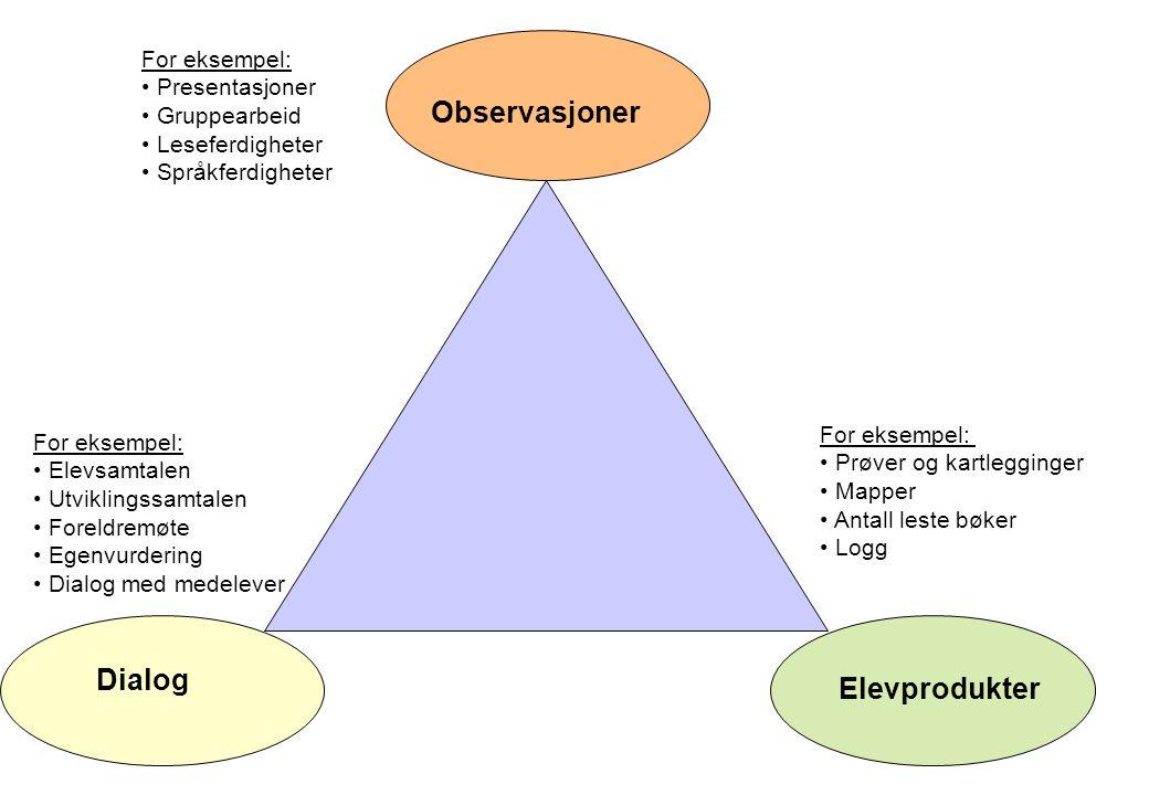 Observasjoner Dialog Elevprodukter For eksempel: Presentasjoner