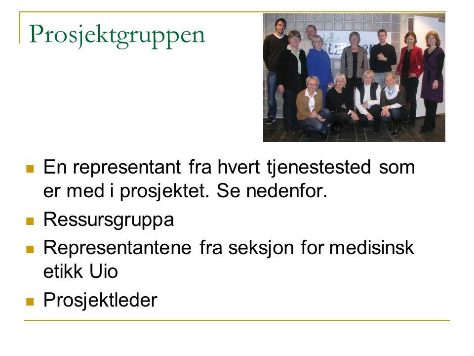 Prosjektgruppen En representant fra hvert tjenestested som er med i prosjektet. Se nedenfor. Ressursgruppa.