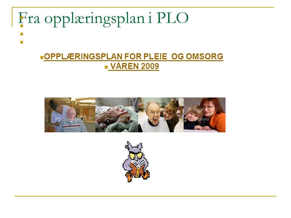 Fra opplæringsplan i PLO