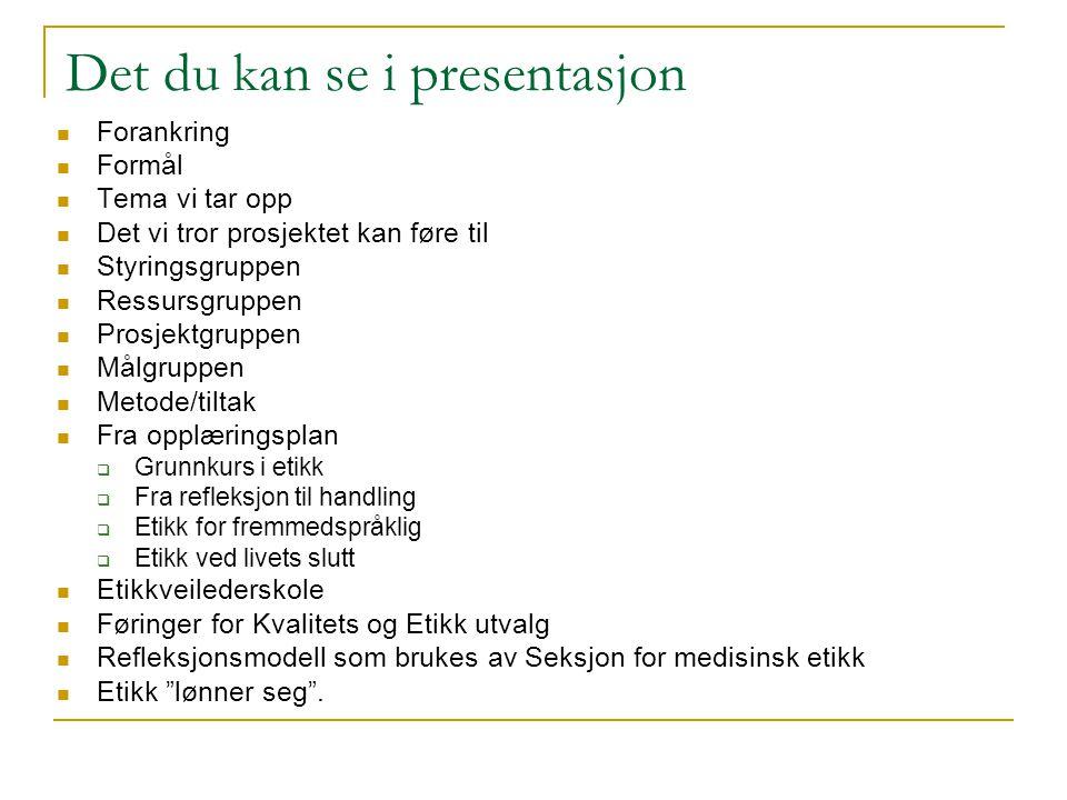 Det du kan se i presentasjon